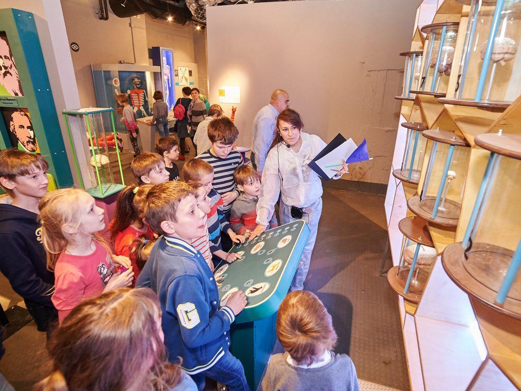 Экскурсия Музей человека Живые системы