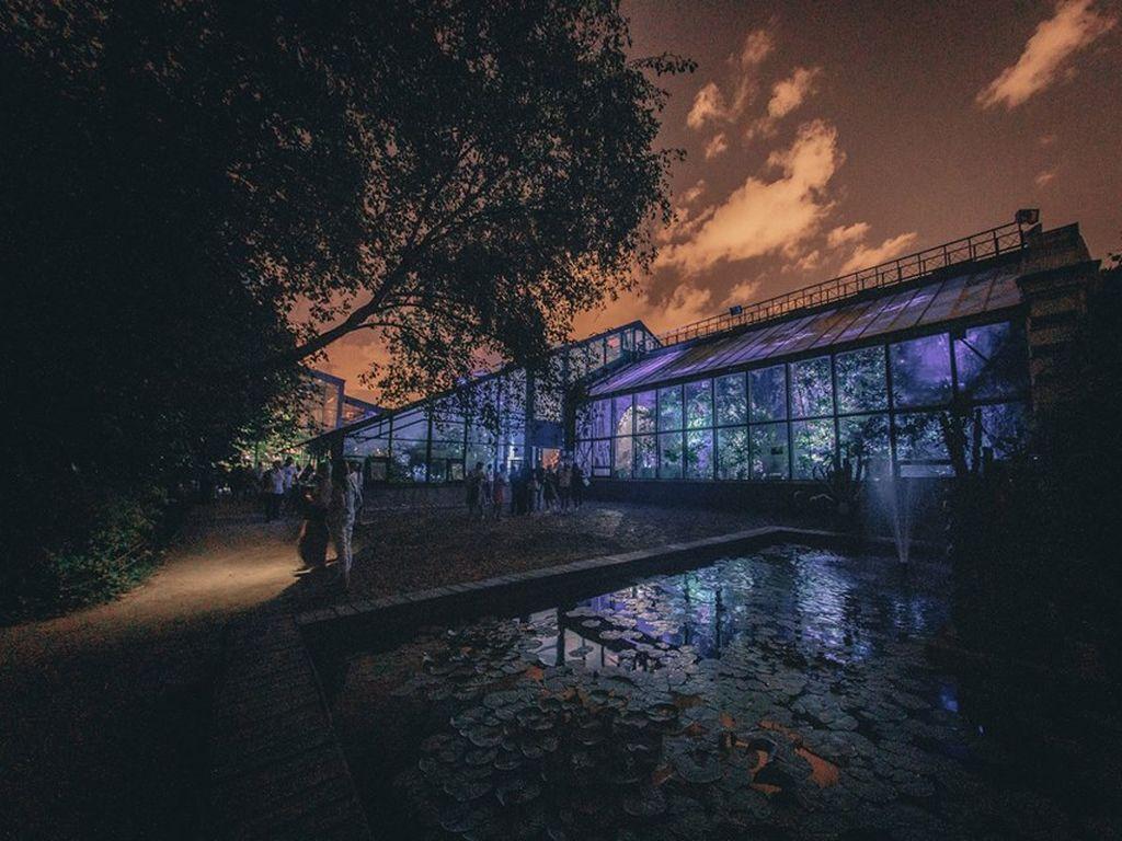 Ботанический сад Аптекарский огород