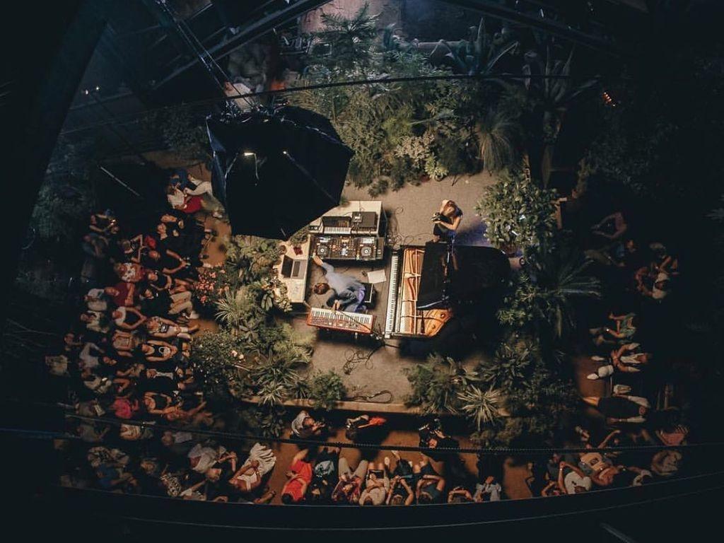 Тропический джаз концерт в тропиках Аптекарского огорода