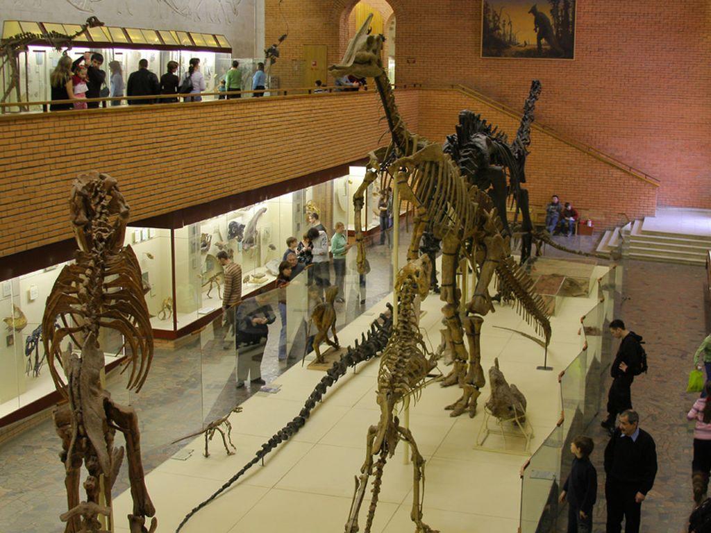 Палеонтологический музей Орлова