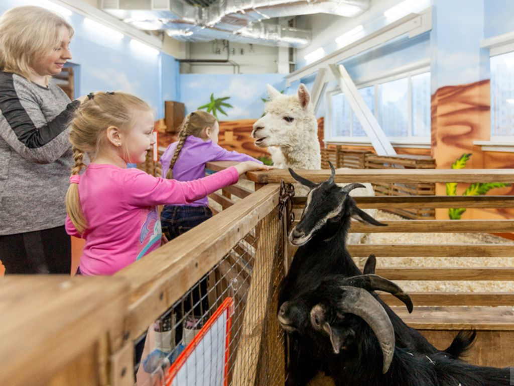 Контактный зоопарк «Страна ЕНОТиЯ» входит в ТОП-10 лучших контактных зоопарков
