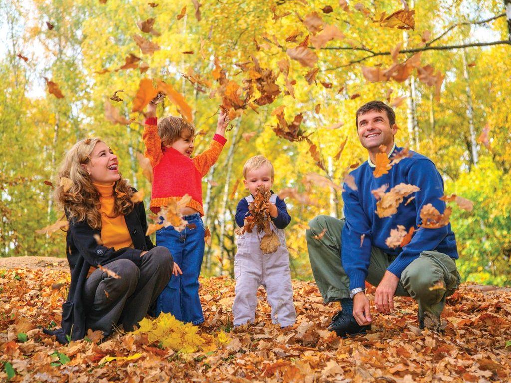 прогулки в лесу с детьми на осенних каникулах