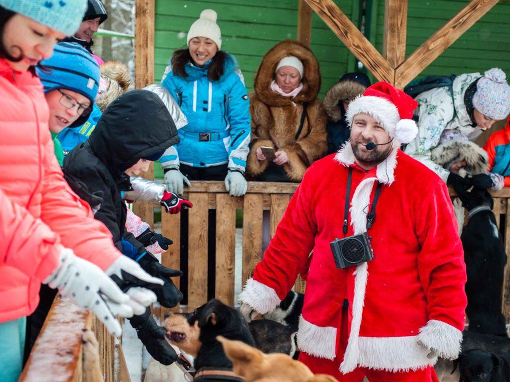 Питомник ездовых собак «Северный» Экскурсионная программа