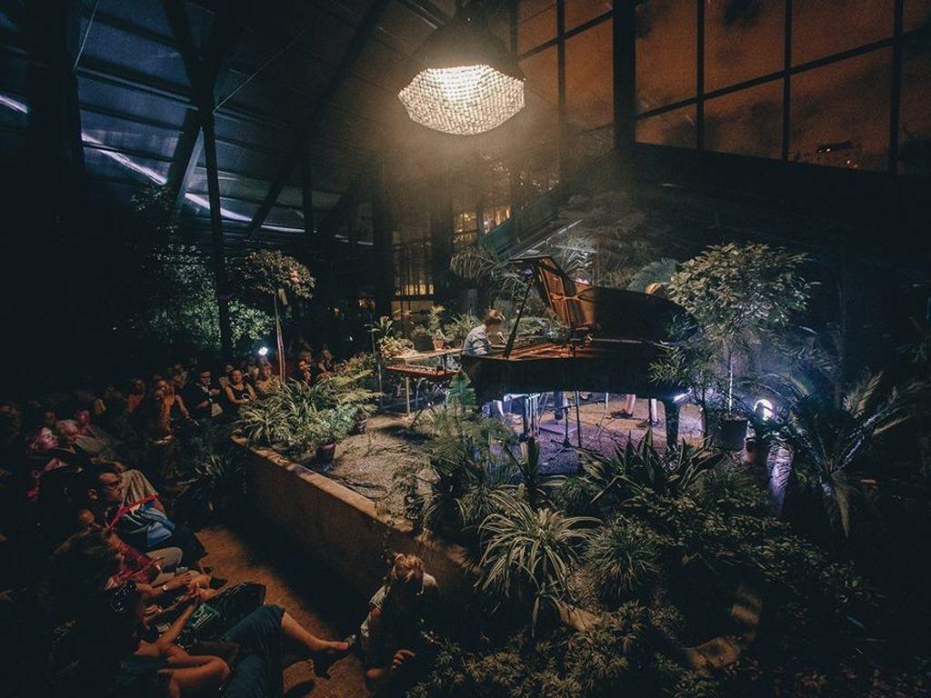 День пианиста в Ботаническом саду
