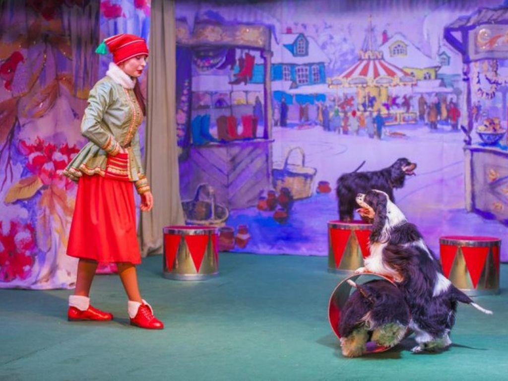 Спектакль Приключения эльфа Роя в Театре Уголок дедушки Дурова