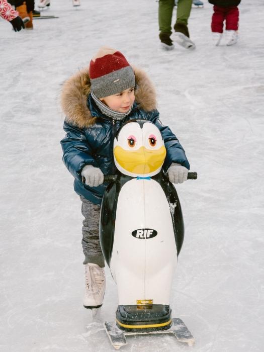 Прокат пингвинов в парке Горького