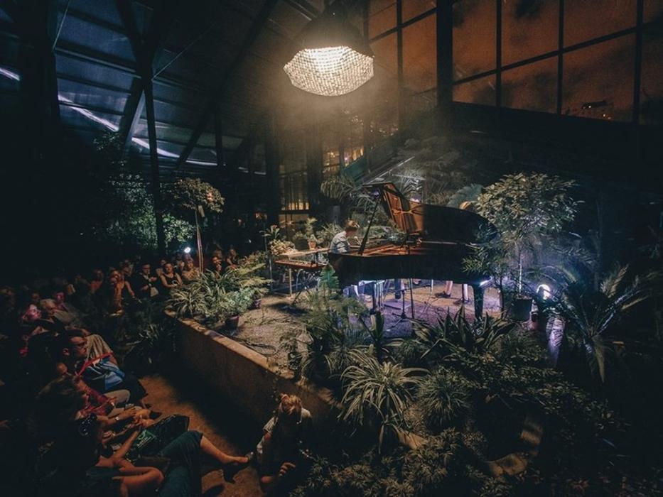 концерт в субтропической галерее