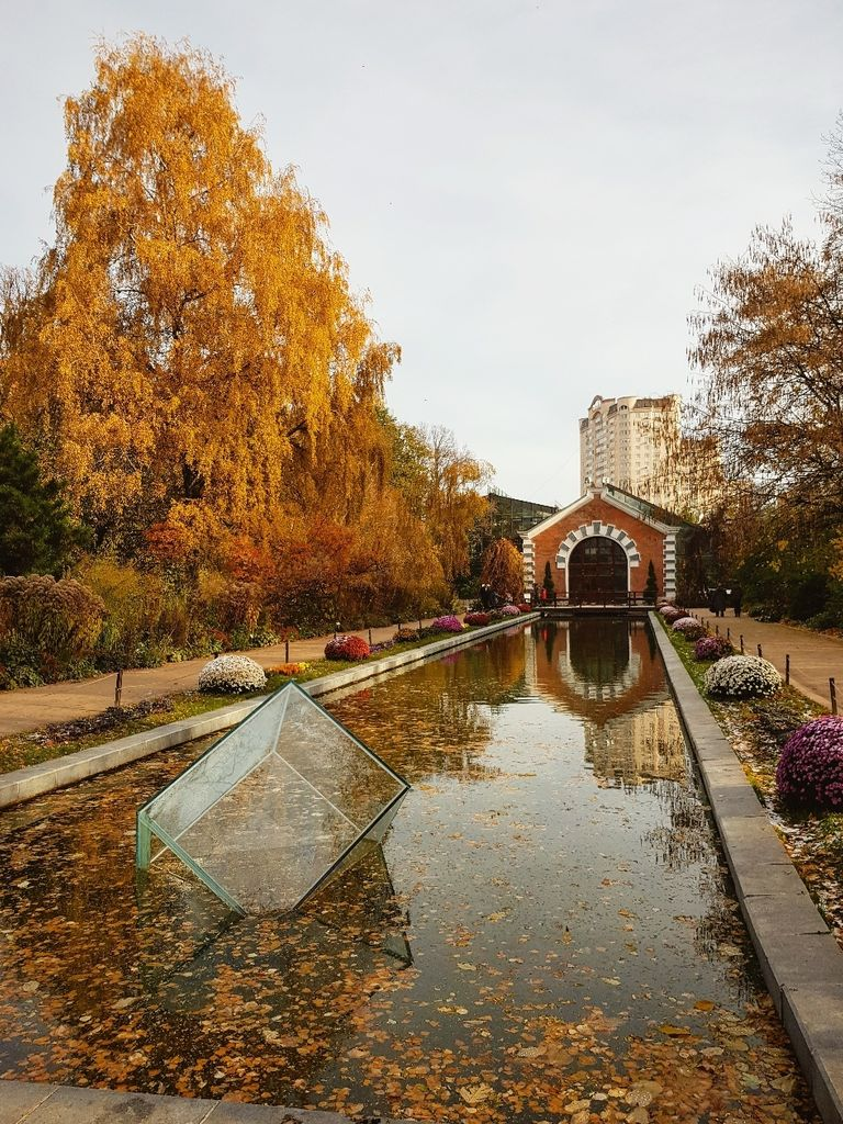 Аптекарский огород Москва