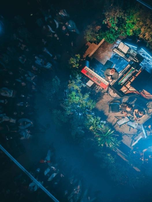 Яркий концерт в Ботаническом саду МГУ