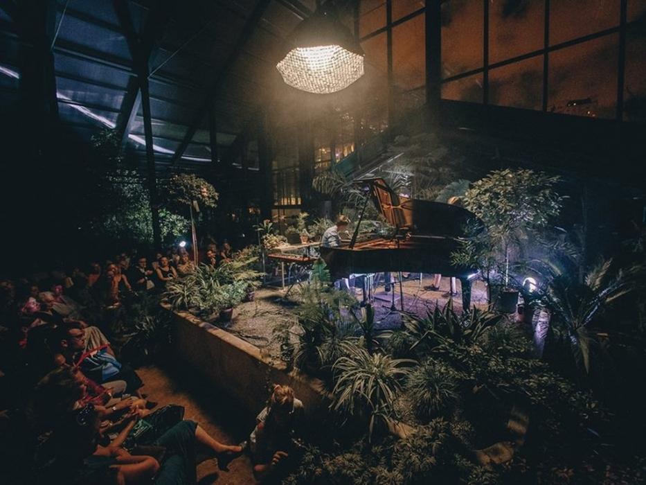 25 декабря концерт Тропическое Рождество