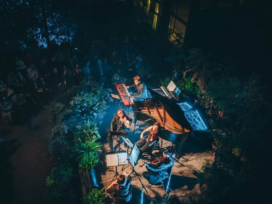 Концерт Тропическое Рождество в Аптекарском огороде
