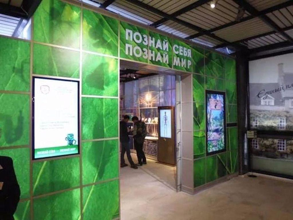 Мультимедийный центр «Познай себя – познай мир» в Музее Дарвина