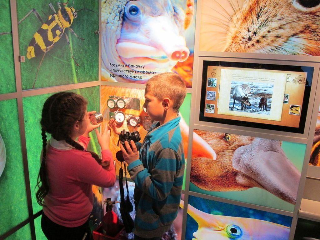 центр «Познай себя – познай мир» в Музее Дарвина в Москве