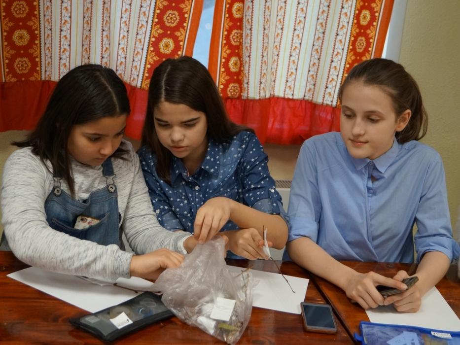 Занятия Карманный микроскоп в в парке Кузьминки-Люблино
