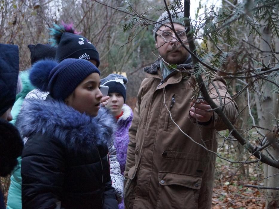 Дети проводят эксперименты с ветками в Природно-историческом парке