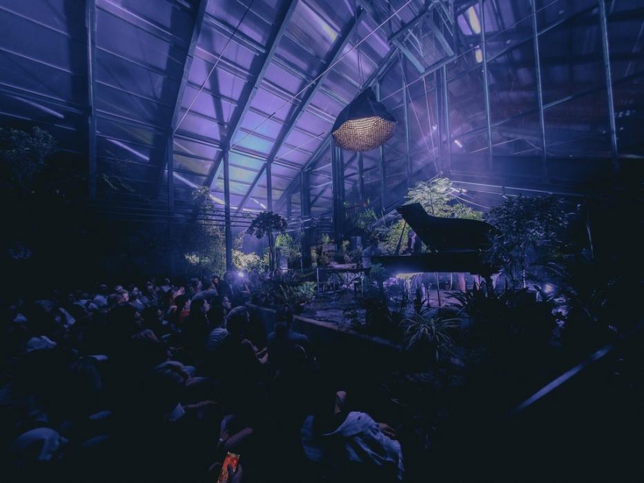 Концерт Ренессанс в тропиках в Субтропической оранжерее