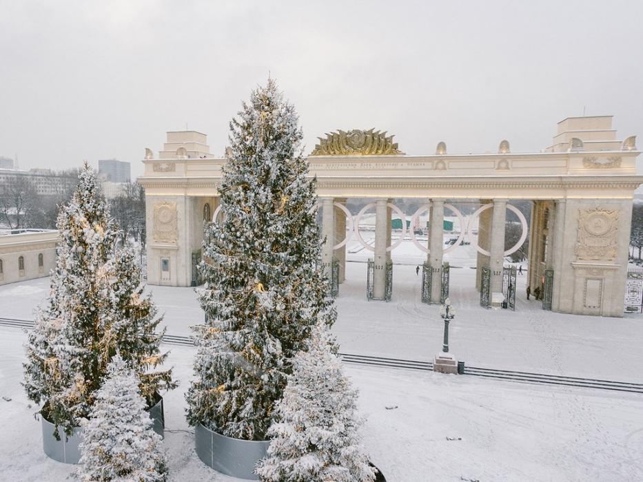 7-метровые лампы для селфи в парке Горького