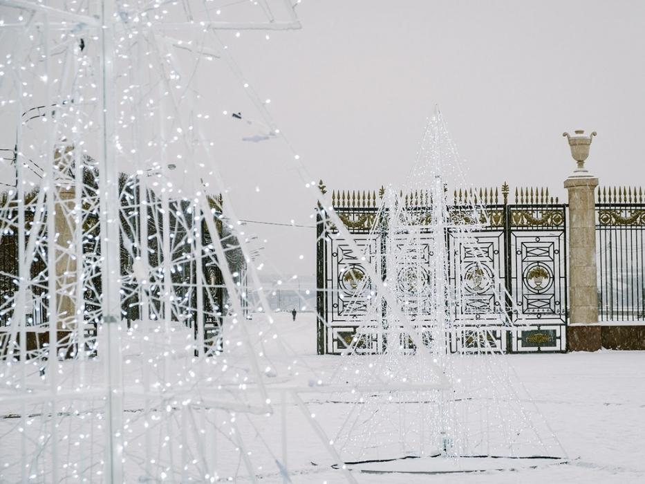 Застывшие ели в парке Горького