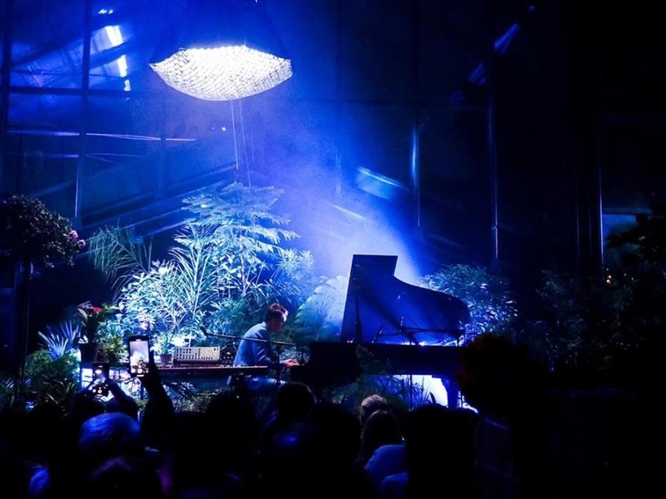 Музыкально-песочное шоу в Ботаническом саду