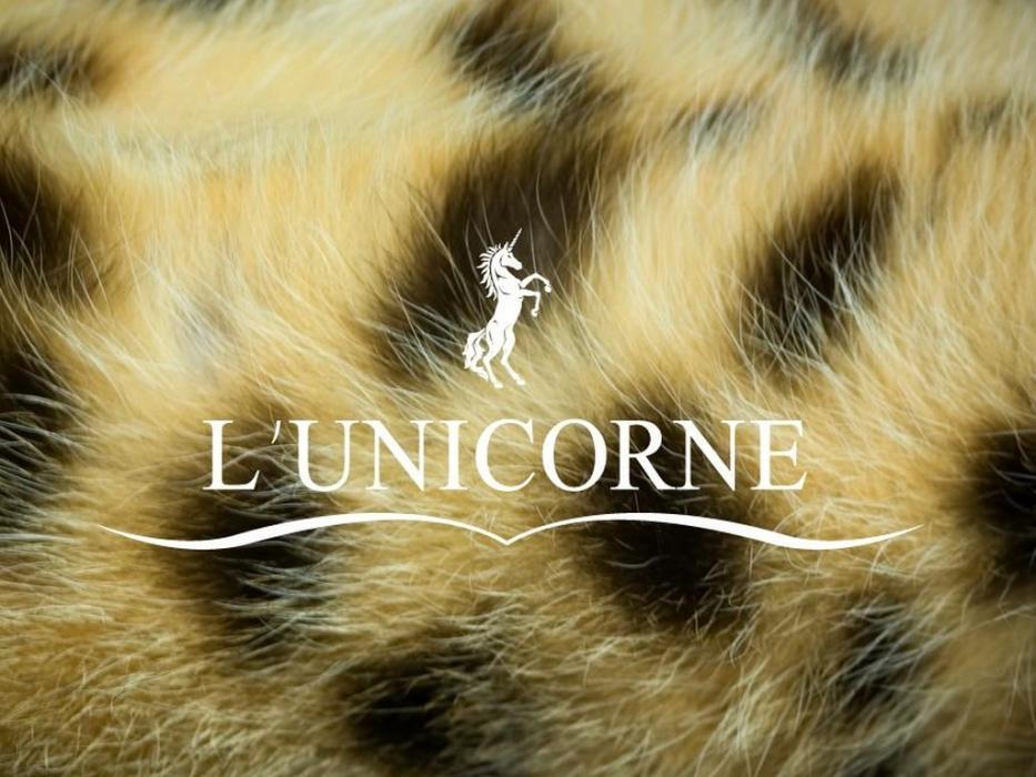 Организатор выставки L'UNICORNE
