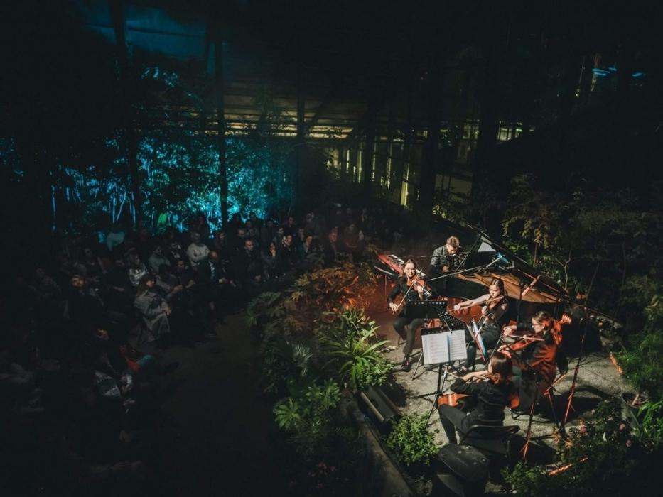 Концерт к Аптекарском огороде 19 января