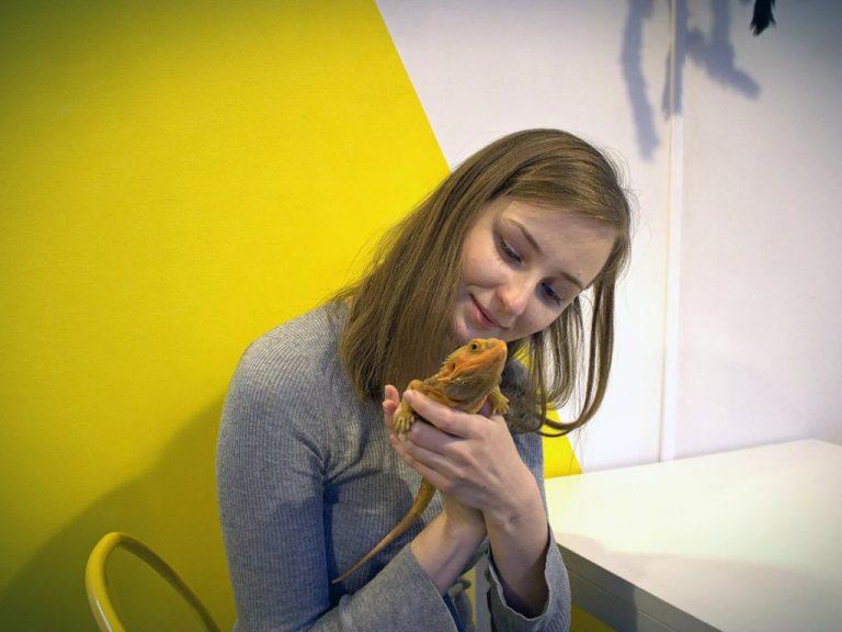 Детский проект Жучки-паучки: лекторий - афиша
