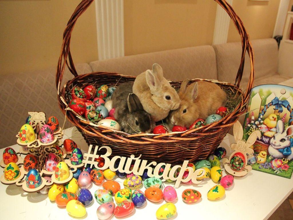 Фестиваль «Пасхальный Кролик» в «Зайкафе»