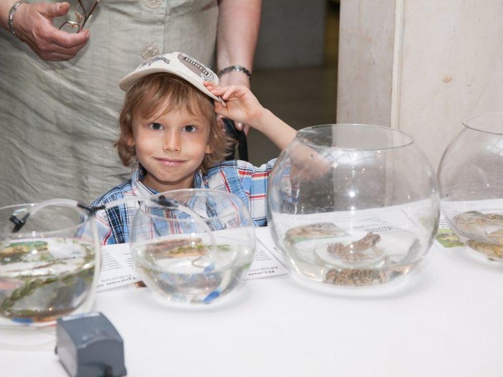 День эколога в Дарвиновском музее