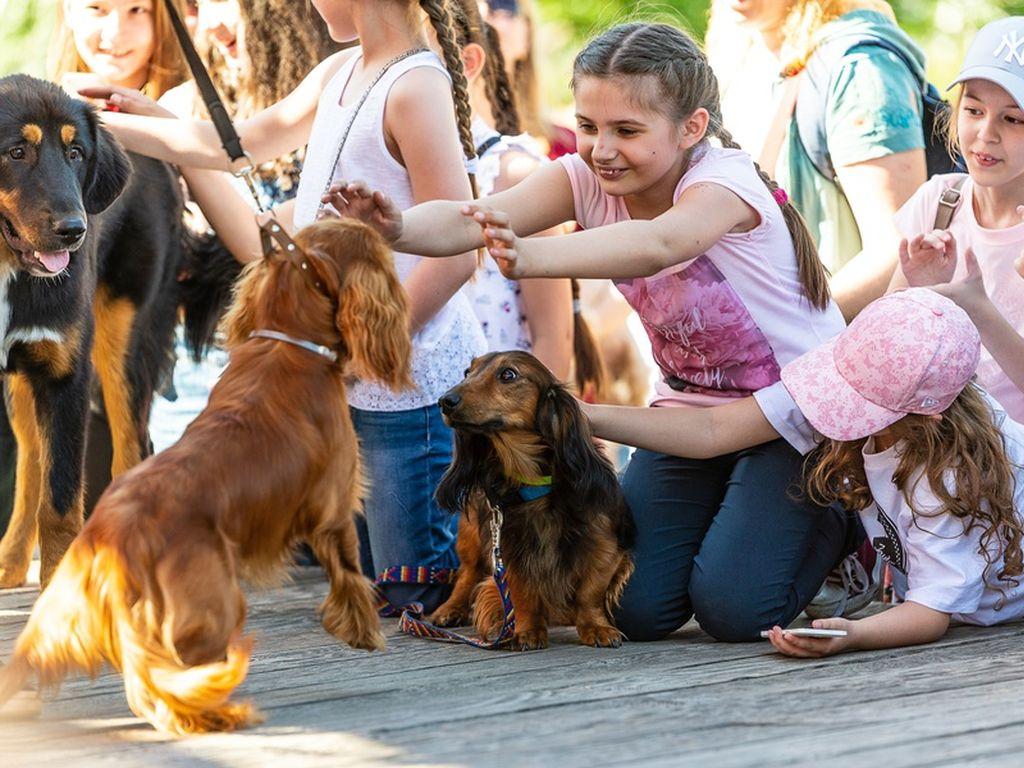 Фестиваль любителей домашних животных PETSHOP DAYS