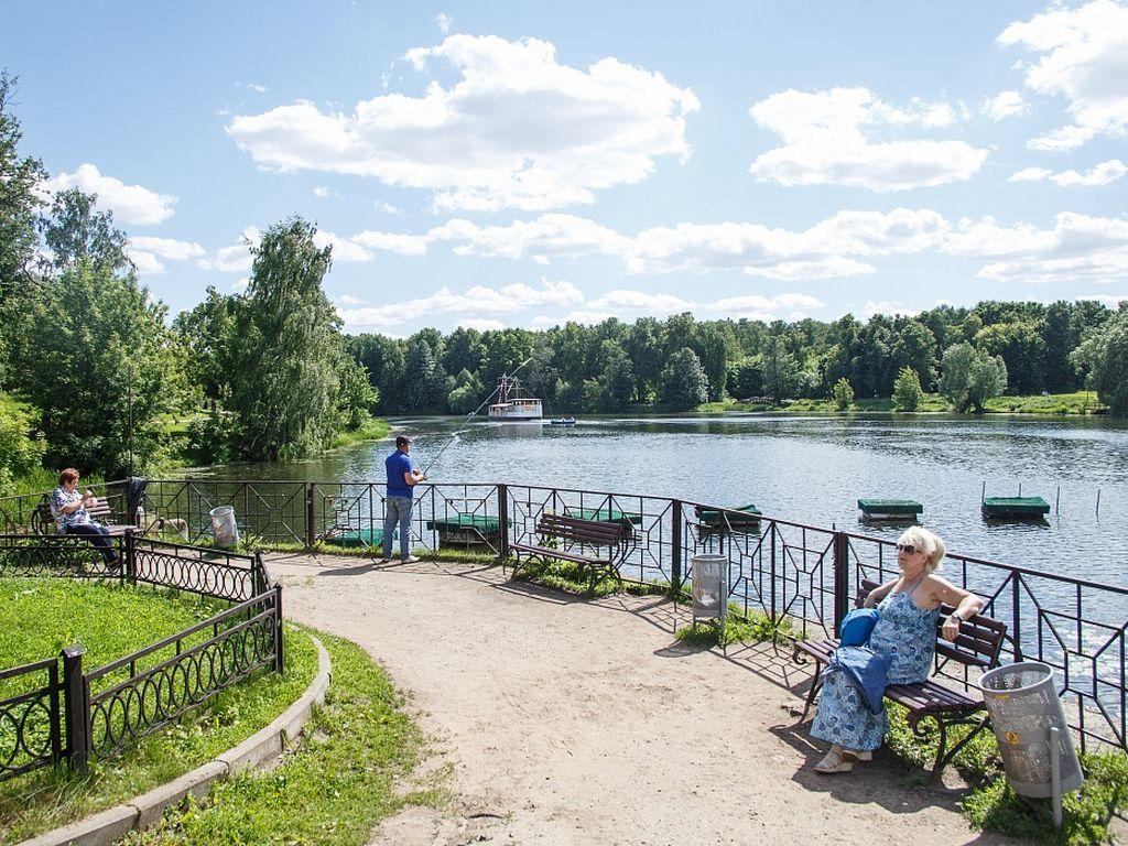 Территория вдохновения в парке Кузьминки