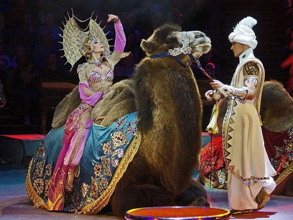 Цирковой спектакль Песчаная сказка
