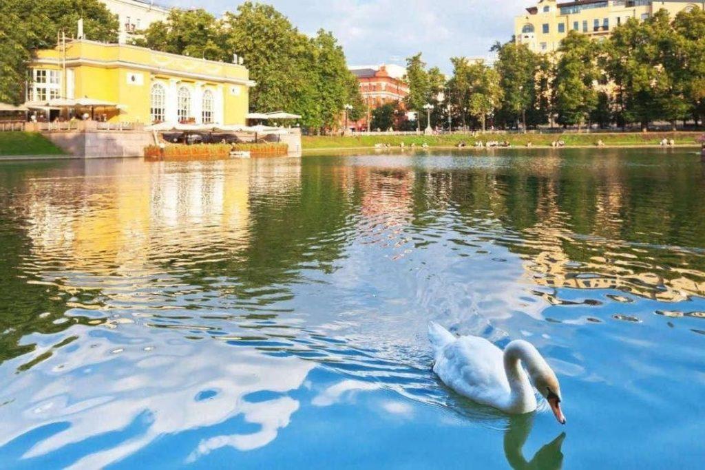 День города на Патриарших прудах