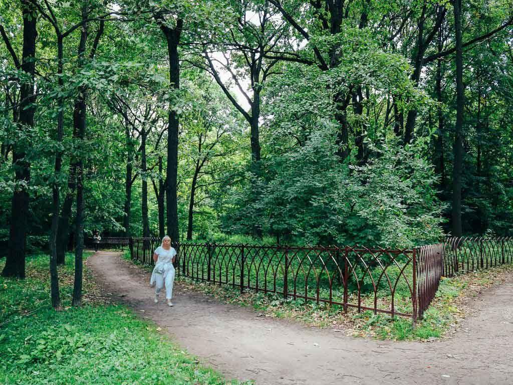 Экскурсия Зеленые исполины усадьбы Воронцово