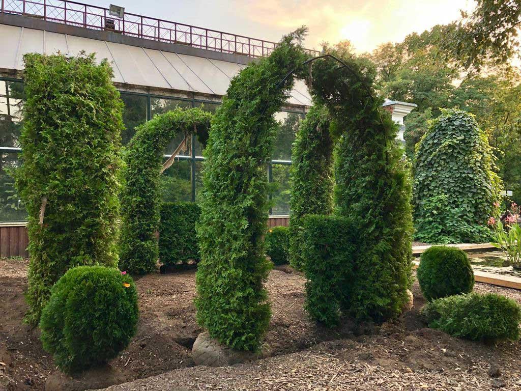 Фестиваль здорового сердца в Ботаническом саду