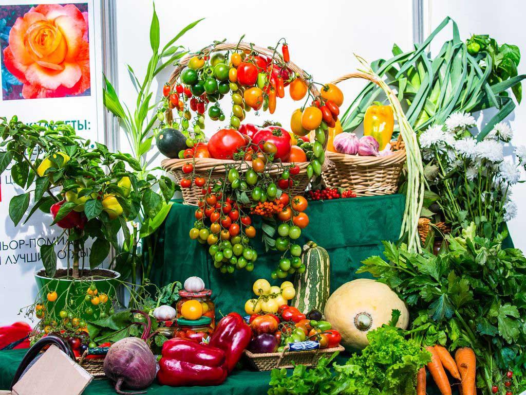 Сельскохозяйственная выставка на ВДНХ ЭКСПО