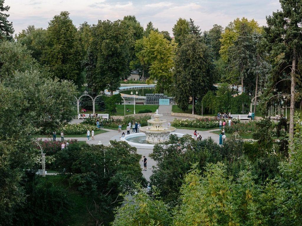 Фестиваль в Парке Горького