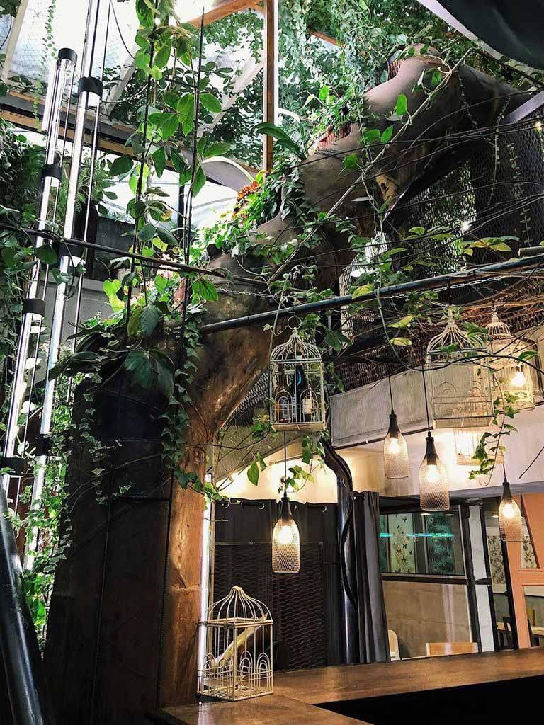 Тропический фуд-корт Садовый Буфет на  Хэллоуин в Аптекарском огороде