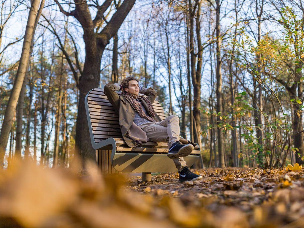Место релаксации и медитации на уединенной лавочке в Ландшафтном парке
