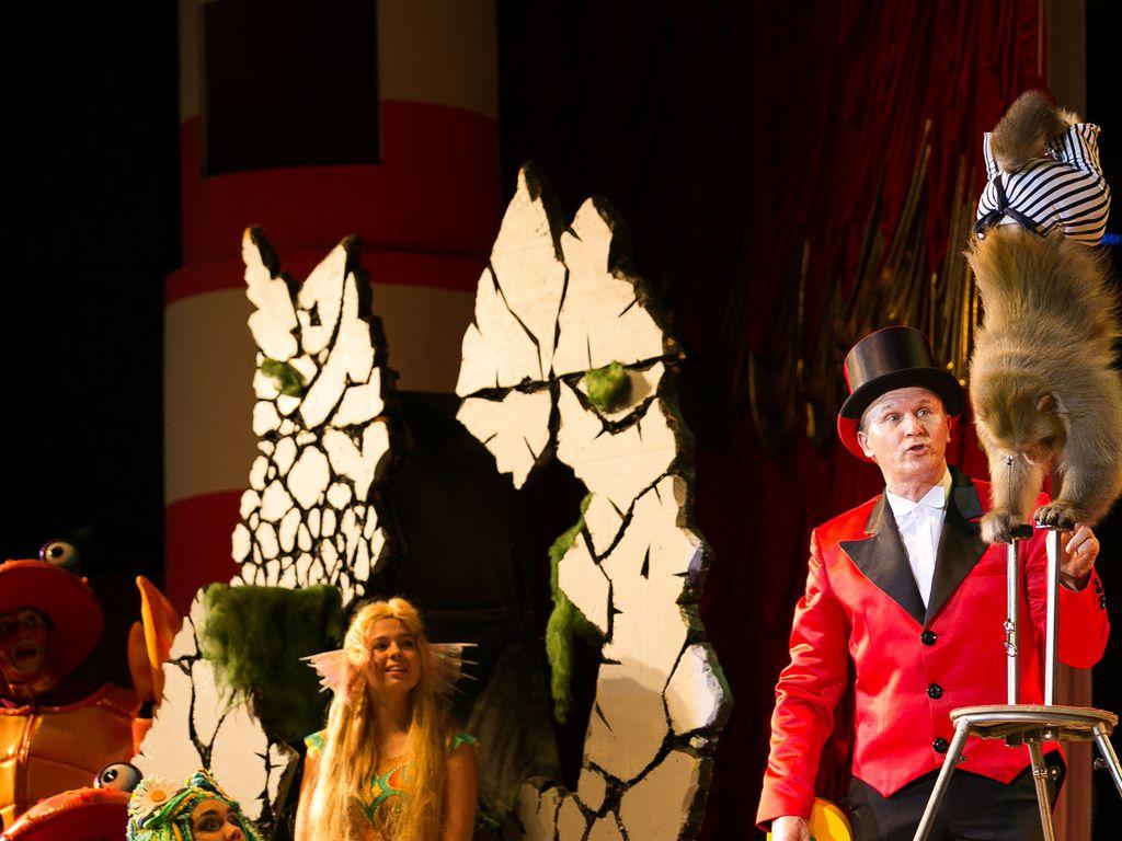 Цирковое шоу Русалочка в Цирке чудес