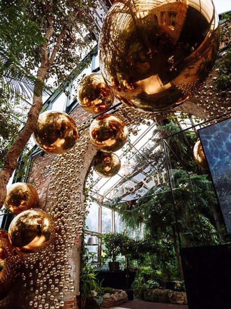Экологические новогодние ёлки