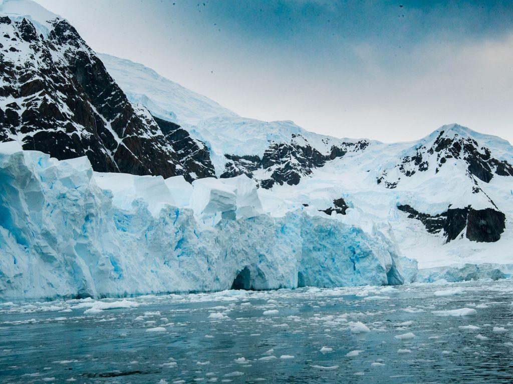 Фотовыставка Открываем Антарктику вместе