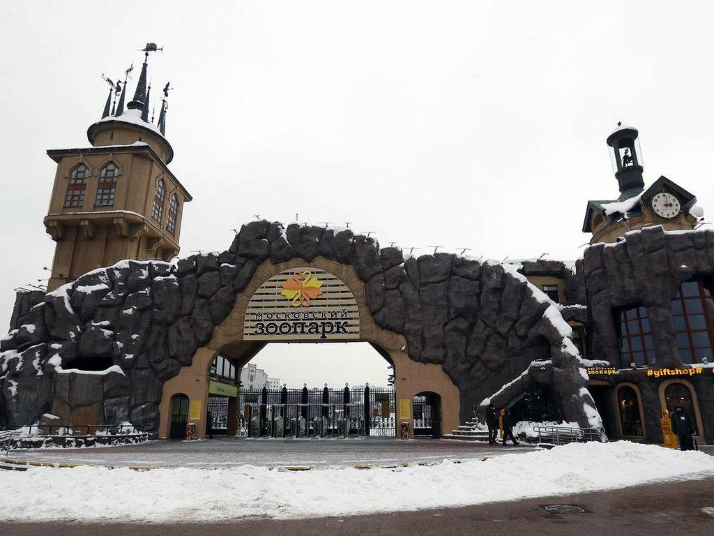 Унизверский квест на день студента в Московском зоопарке