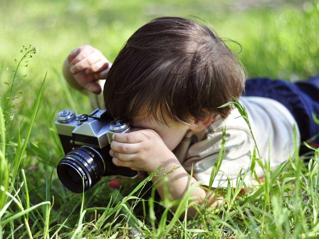 Весенние курсы Фотограф-анималист