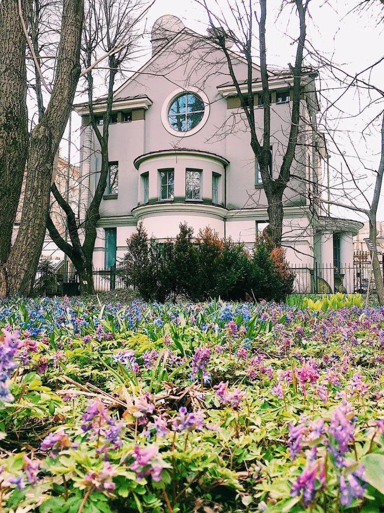 Цикл виртуальных экскурсий в Ботаническом саду