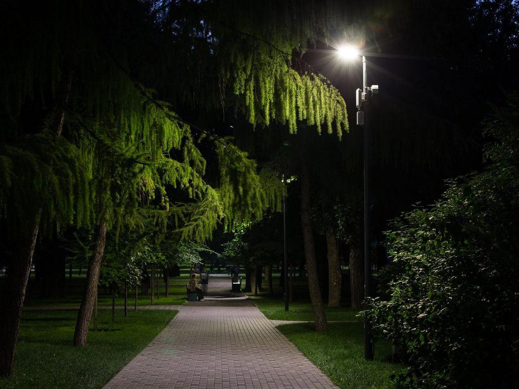 Онлайн-проект Сказки на ночь в Таганском парке