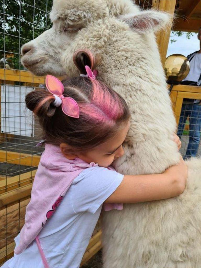 Альпака с детьми в парке Сказка