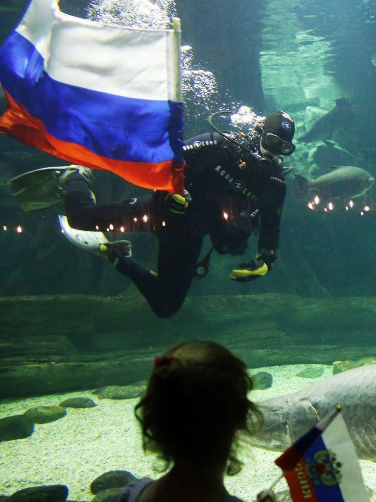 Водолазы в аквариуме на Главной выставке страны