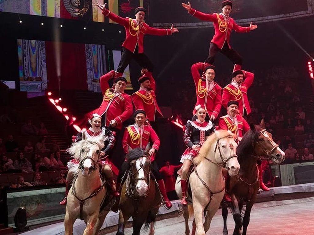 Цирк и100рия