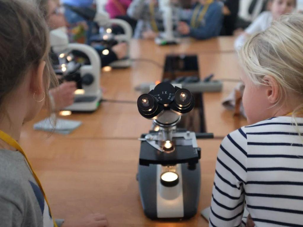 Университет детей: Направление Энергия