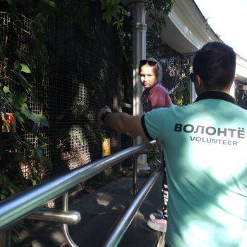 Школа-волонтер в Московском зоопарке